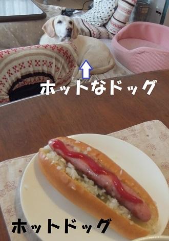20140112131210340.jpg