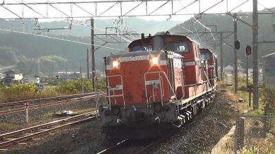 DSC00429k.jpg