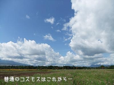 20100918-03.jpg