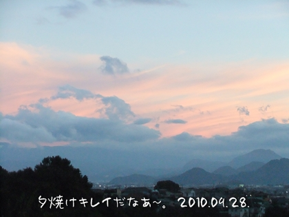 20100928-01.jpg