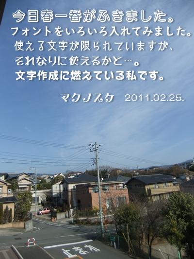 20110225-03.jpg