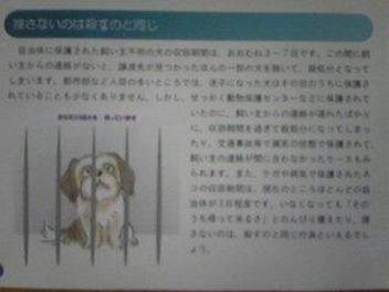 moblog_1742ee66.jpg