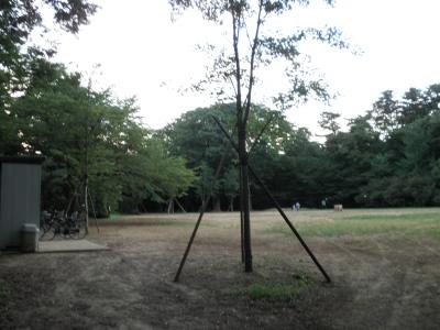 P8070481.jpg