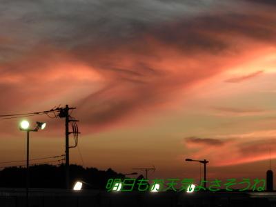 P8070496.jpg
