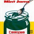 カシオペア Mint Jams