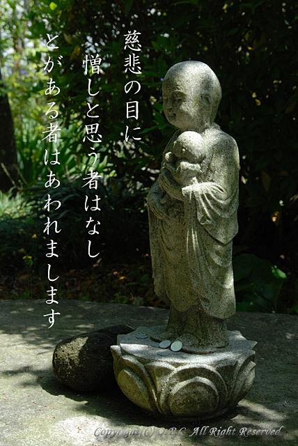 20091116_153601_1.jpg