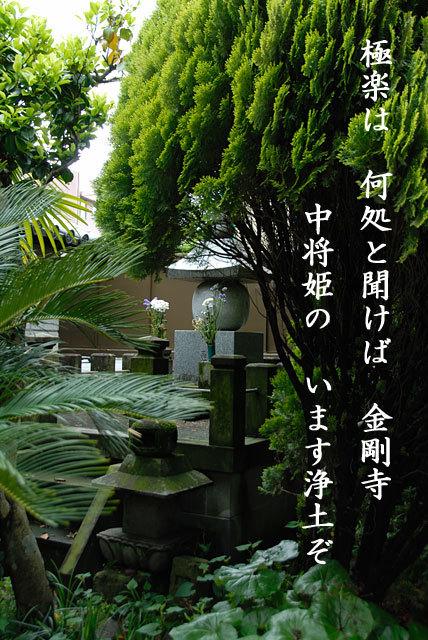 20091214_104900_1.jpg