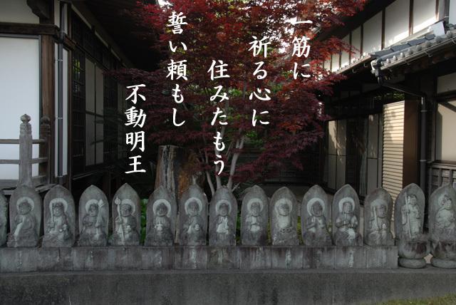 20091229_133842_1.jpg