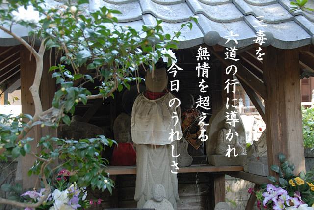 20100104_113220_2.jpg