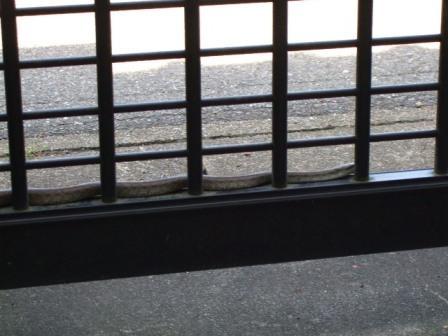 御嵩町 アルミ門扉と蛇3