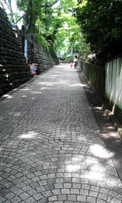 NCM_1253.jpg