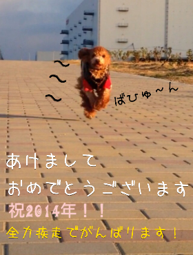 fc2_2013-12-31_20-15-03-581.png