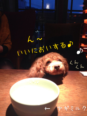 fc2_2014-01-29_23-09-53-539.png