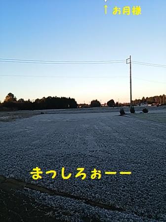 20131227152605118.jpg