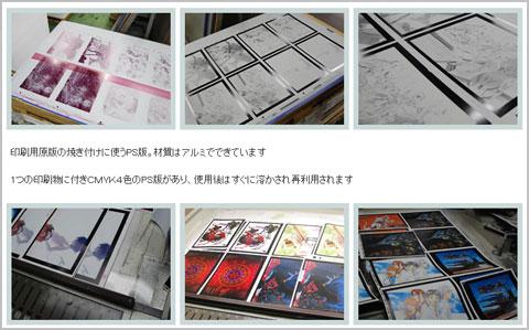 eva_2013_11_zz_207_2013113017541963c.jpg