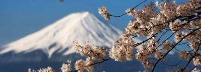 桜と富士0319