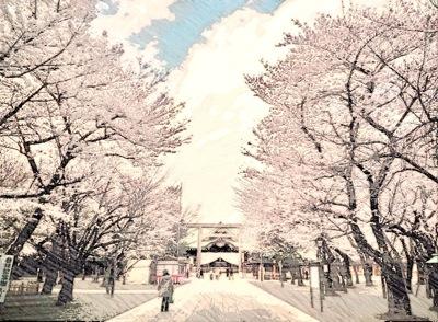 靖国神社と桜並木