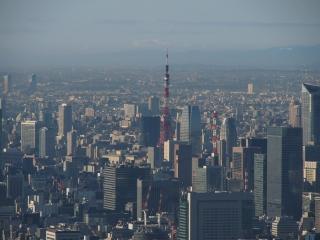 東京タワー(東京スカイツリーより)