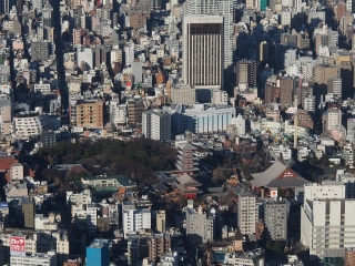 浅草寺&花やしき(東京スカイツリーより)