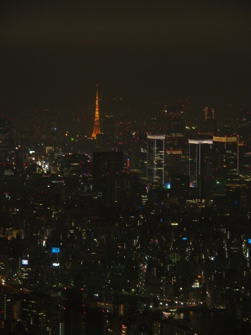 東京タワー【東京スカイツリーより】