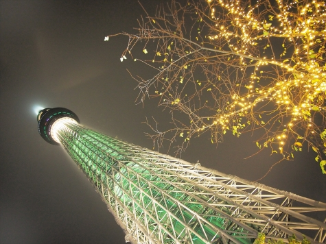 東京スカイツリー【シャンパンツリー・ライティング】