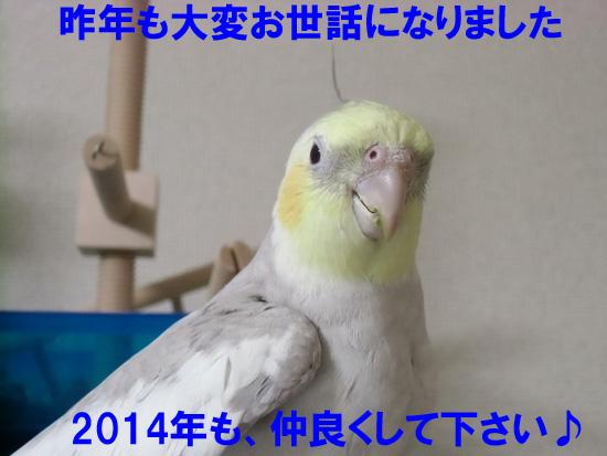 20140101232003218.jpg
