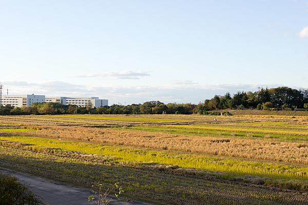農業総合試験場-11