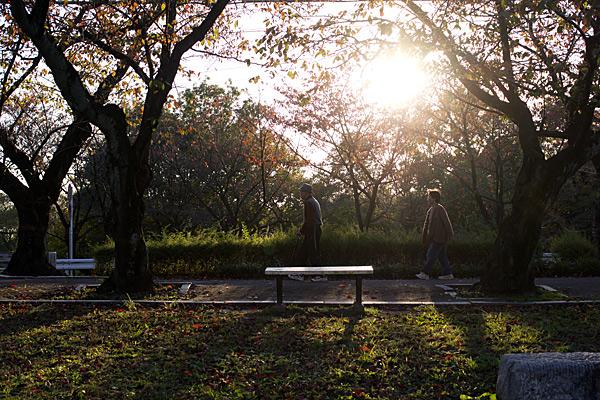 季節の風景-11