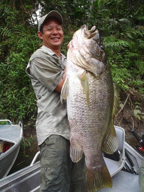 パプアニューギニア、7月釣行