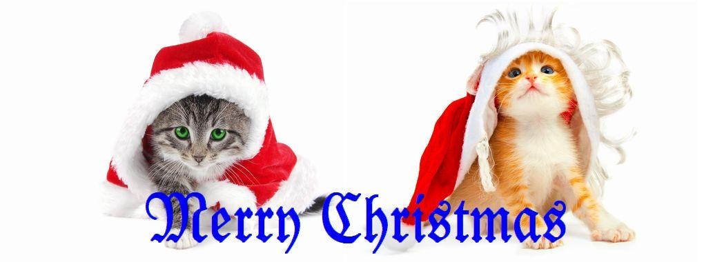 Santa_Cats_1020x380_b.jpg