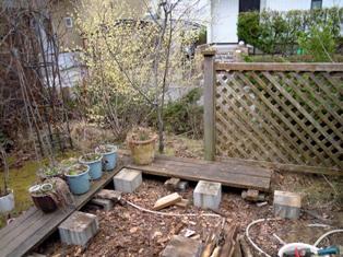 my-garden 028 (3)
