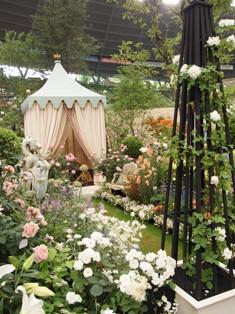 my-garden 165