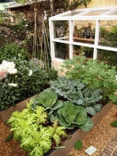 my-garden 228