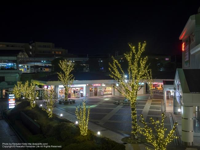 ローゼン緑園都市店前の広場とイルミネーション