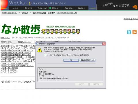 Webページに問題があるため、正しく表示または機能しなくなる可能性があります。今後、ステータスバーに表示された警告アイコンをダブルクリックすると、このメッセージを表示できます。という警告