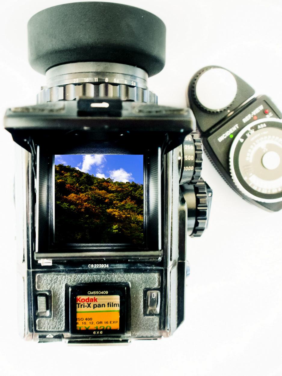 1-JPEG25-c1.jpg