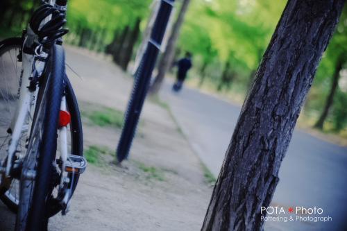 IMG_6142s.jpg
