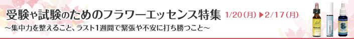 top_bannar_jyuken.jpg