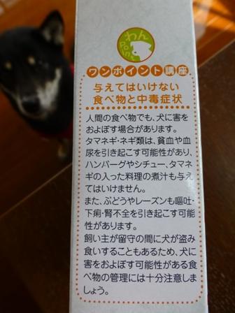 わんちゃんのミニすき焼き2