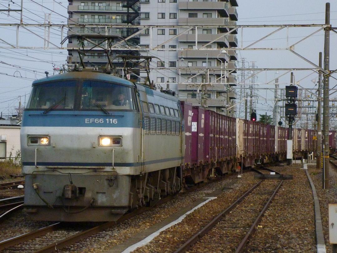 11/28 鉄道mini撮影記 サメちゃん