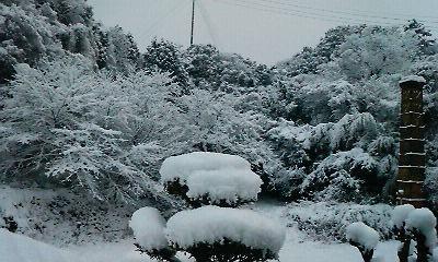 宏之旅立ちの朝(H21.1.25撮影)