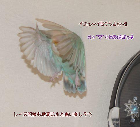 20141025210858804.jpg