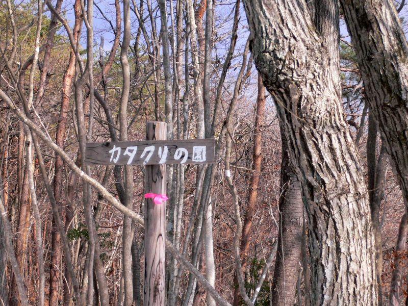 カタクリ園標識
