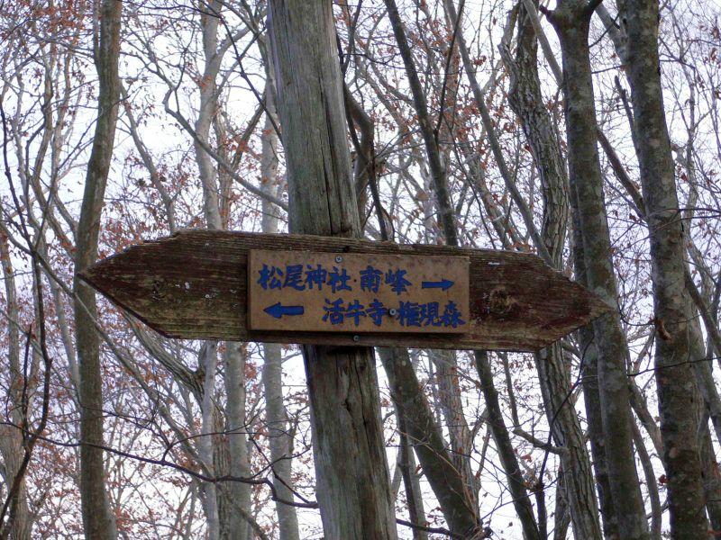 権現森への標識