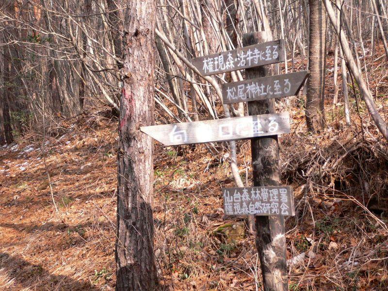 向田口と頂上の分岐点標識