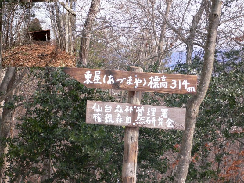 頂上直下の標識