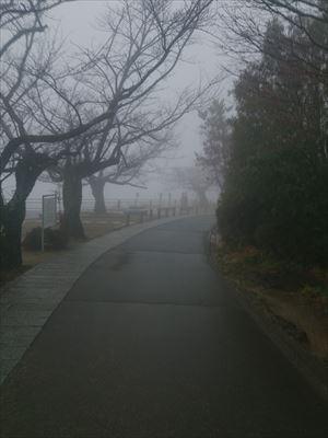001_20140108.jpg