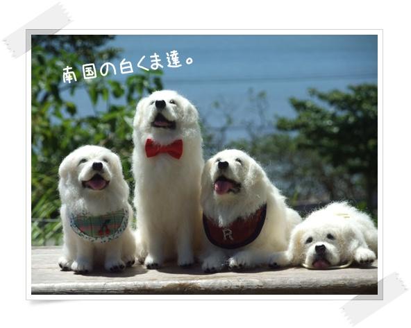 2011_08180041.jpg