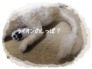 2011_11260011.jpg