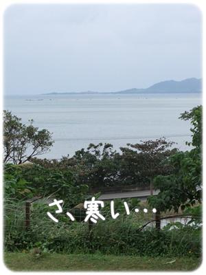 2012_01060008.jpg
